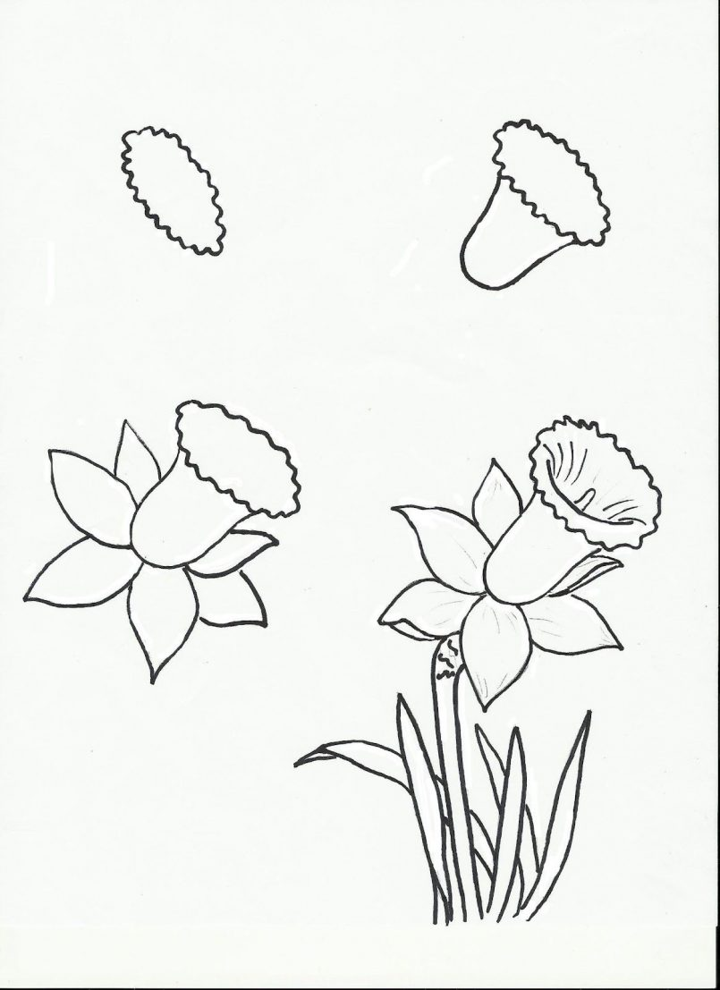 805x1107 Drawing How Draw A Cartoon Rose Bushgether With How