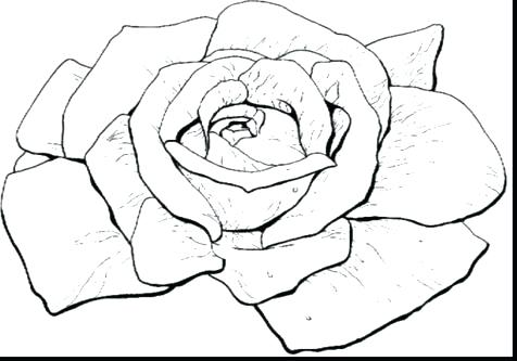 476x333 Pencil Roses Coloring Sheet Scissors Coloring Sheet