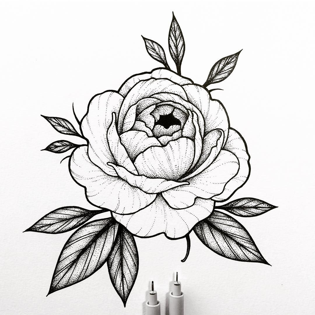1080x1080 Peony Rose Design For April