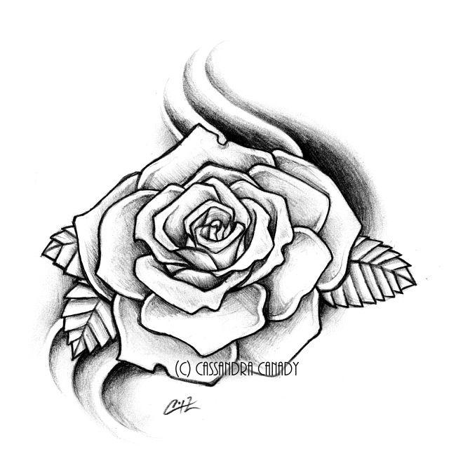650x667 Rose Drawing