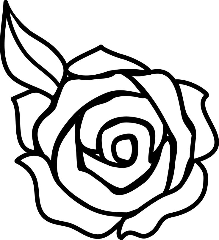 736x807 Rose Drawing Easy