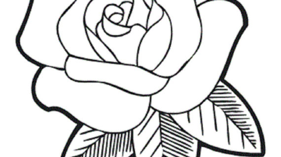 570x320 Rose Drawing For Kids The Very Fragrant Flower Coloring