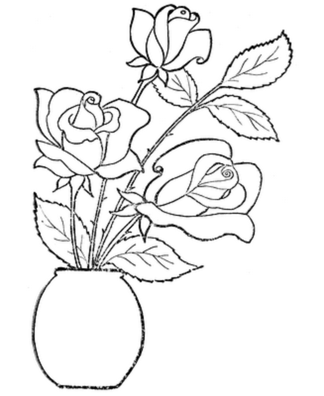 654x800 Coloring Pages Draw A Rose For Kids