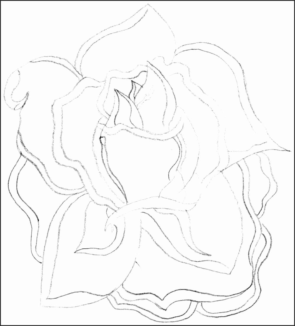 998x1105 Open Rose Drawing Obuvf Lovely Outline Eletragesi Open Rose
