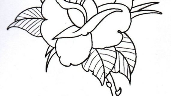 570x320 Easy Rose Drawings Drawing A Rose In A Simple Stencil Design Style