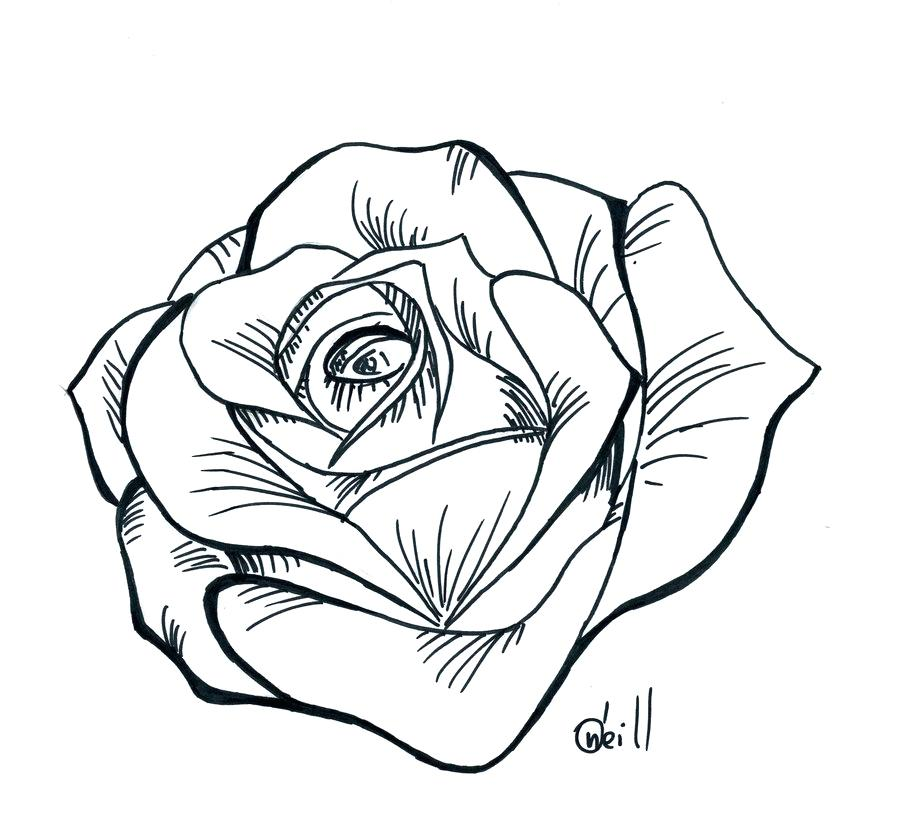 Exceptional image intended for rose stencil printable
