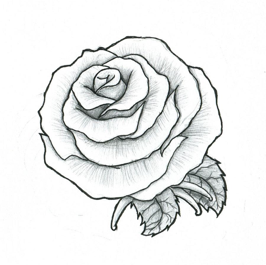 900x896 Rose Maybe A Fist Tattoo By Pulverisedfetus Motifs