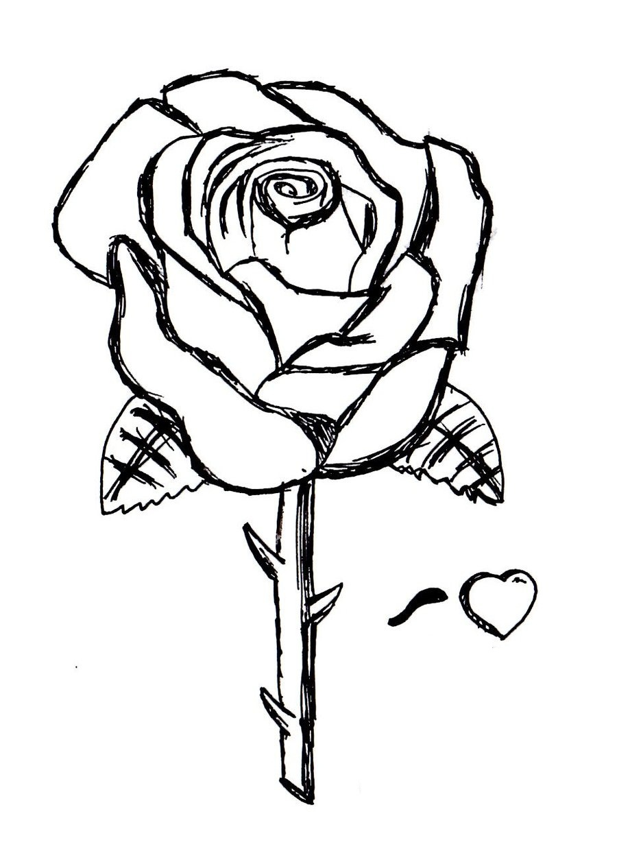 900x1238 Rose Coloring Pages