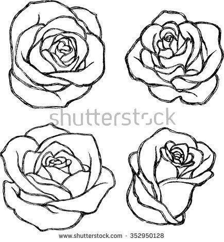 435x470 Drawn Sketch Rose Flower