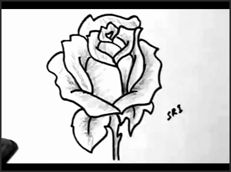 460x342 Easy Flower Sketches Cg2ry Beautiful How To Draw A Rose Flower