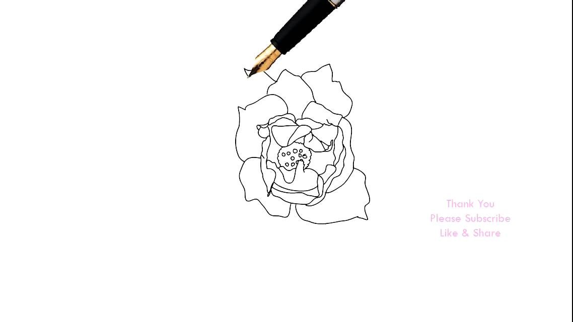 1138x640 How To Draw A Rose Flower Easy Line Drawing Sketch