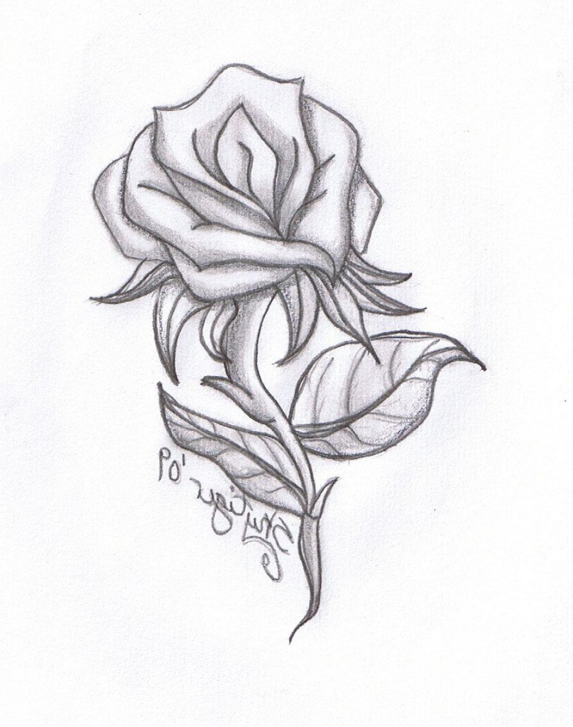807x1024 How Draw A Flower Using Pencil How