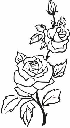 236x426 Roses, Flowers, Vine, Leaves, Bud, Open, Clip Art, Black And White