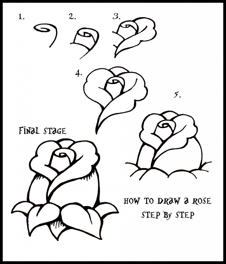 879x1024 How To Draw Flowers Rose By Steps Easy Rose Drawing Steps 1000