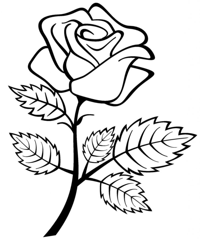 851x1024 Rose Drawing For Kids Rose Drawing For Kids