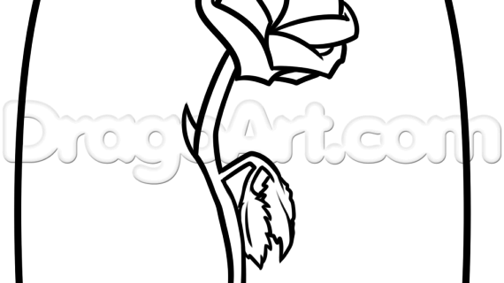 570x320 Beauty And The Beast Rose Drawing Beauty And The Beast Rose