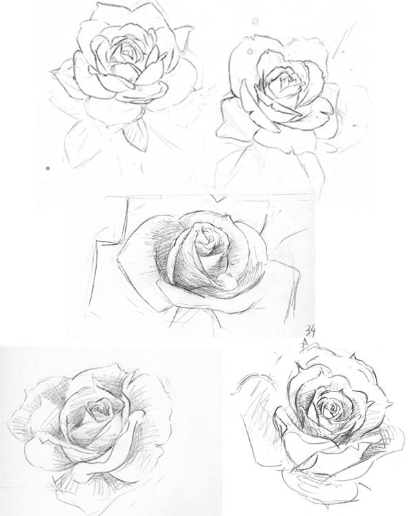 600x750 Sketch In The Rosegarden By Harakirimushi