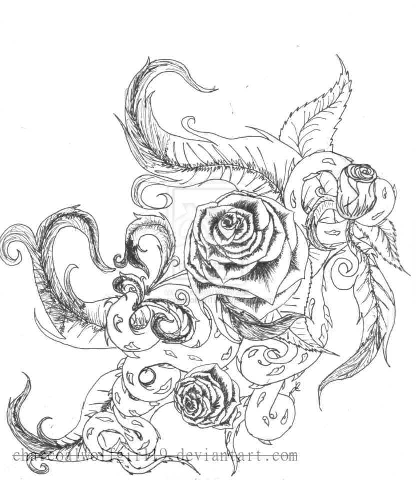 832x960 Rose Drawings With Vines Roses With Vines Drawing Rose Vine