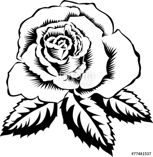 489x500 Silhouette Outline Rose With Leaves. Vector Tattoo Illustration
