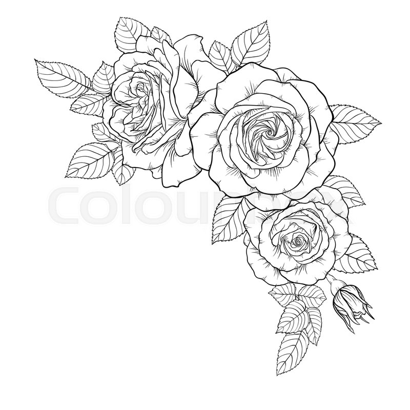 800x800 Beautiful Black And White Bouquet Rose And Leaves. Floral