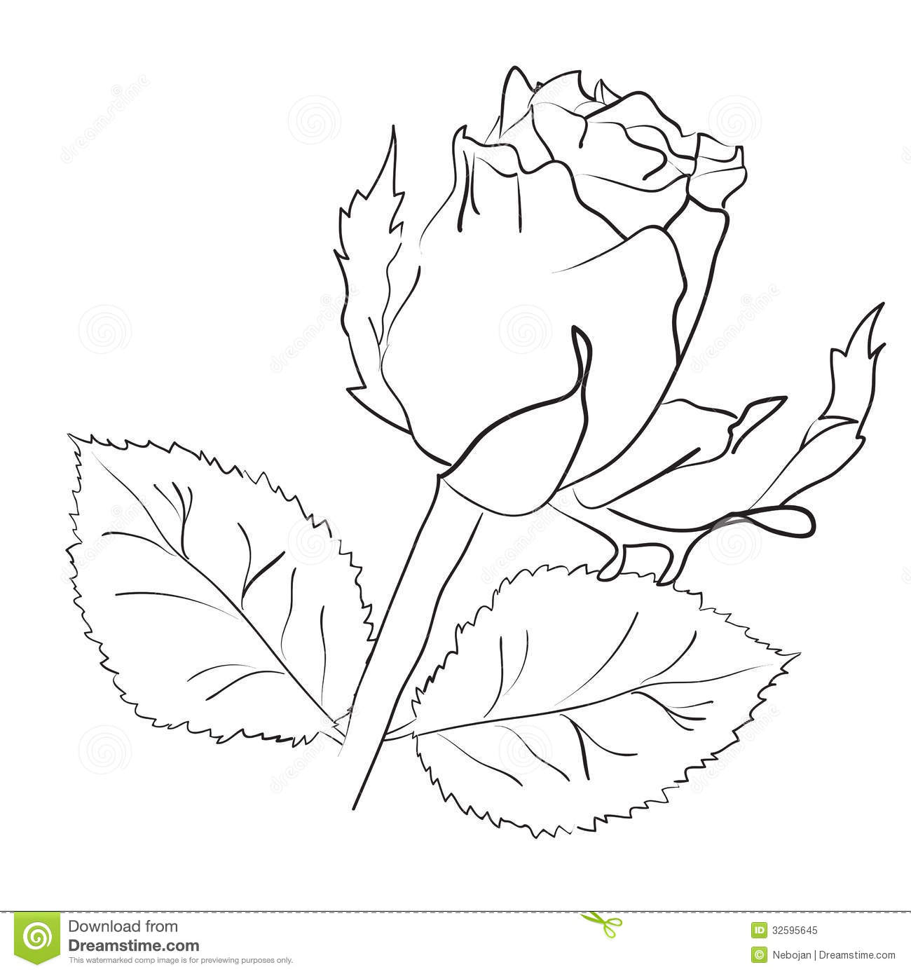 1300x1390 Best Photos Of Rose Leaves Drawing