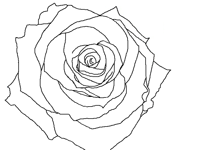 Rose Line Drawing At Getdrawings Com Free For Personal Use Rose