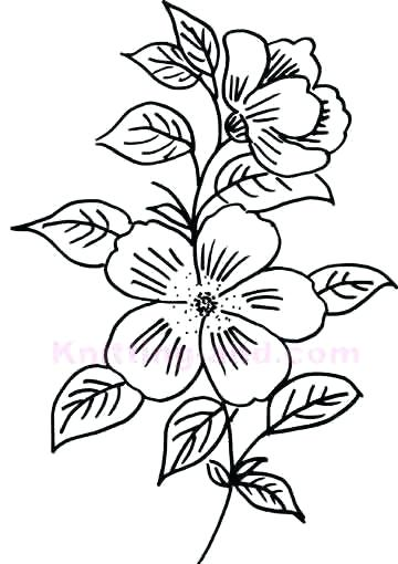 360x510 Free Drawing Patterns A Free Collection Of Hand Drawn Vector