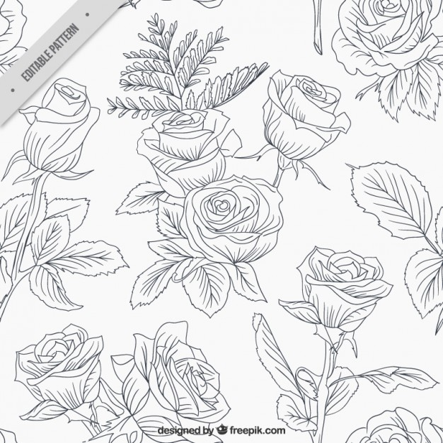 626x626 Sketchy Roses And Leaves Pattern Vector Free Download