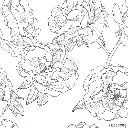 500x500 Vector Floral Seamless Pattern. Black And White Background