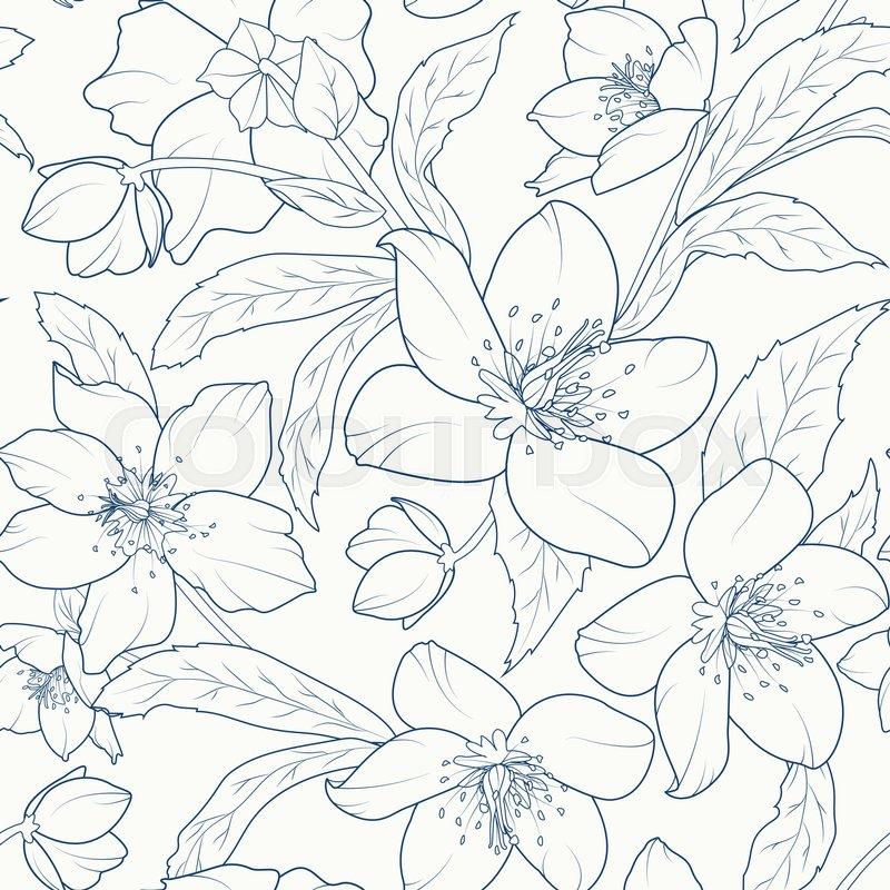 800x800 Blooming Hellebore Flowers Seamless Pattern. Christmas Rose
