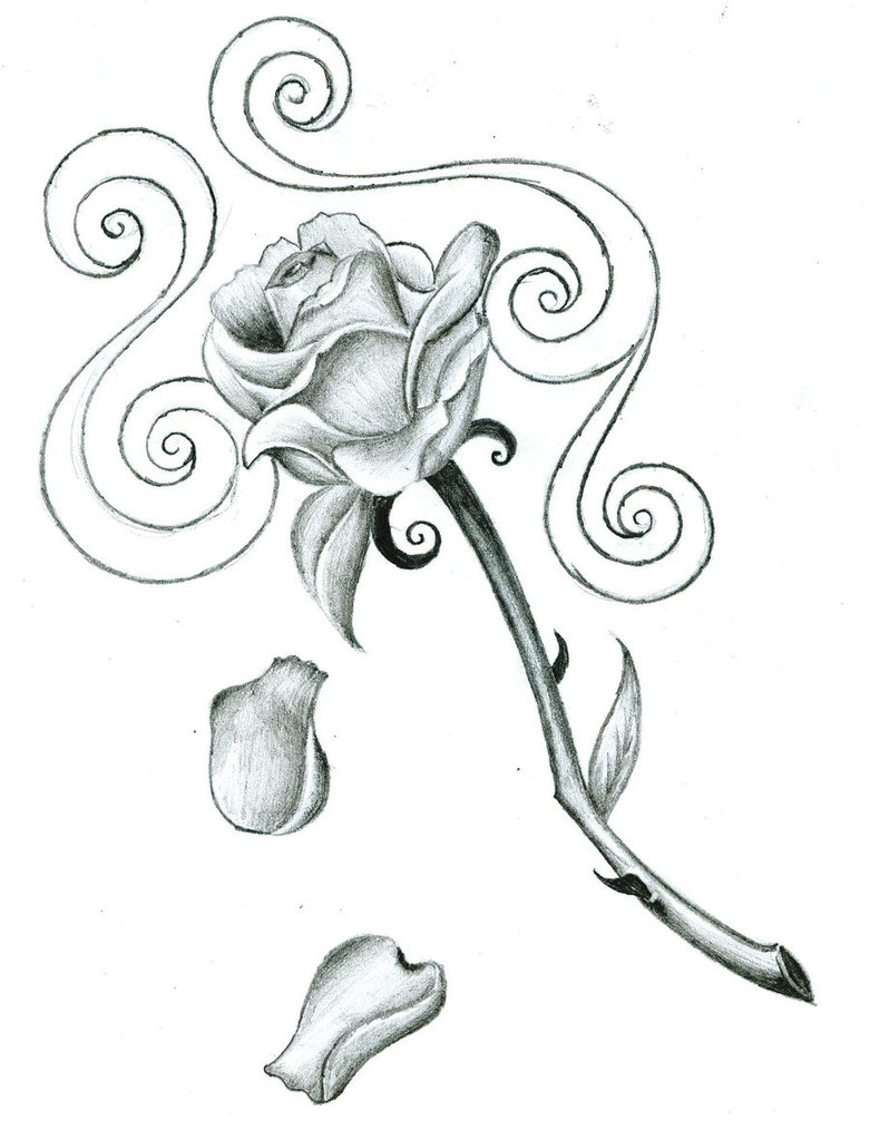 781x1022 This Rose, Without The Spirals And The Falling Petals, All Inked