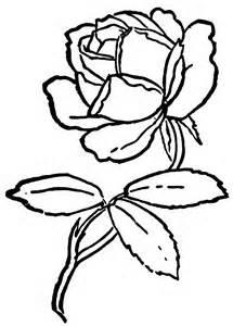 215x300 Rose Cartoon