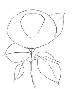 236x290 How To Draw Roses