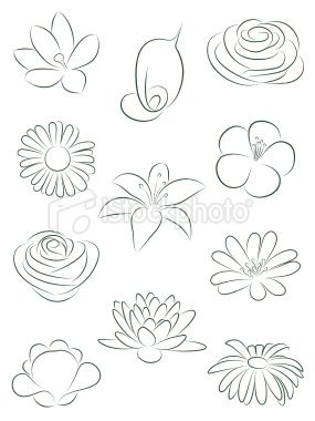 285x380 Set Of Flowers. Vector Illustration. Drawing Flowers, Drawings