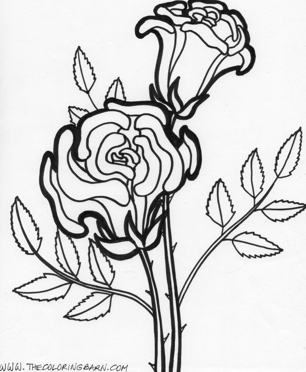1000x1216 Flower Page Printable Coloring Sheets Flower Printable Coloring