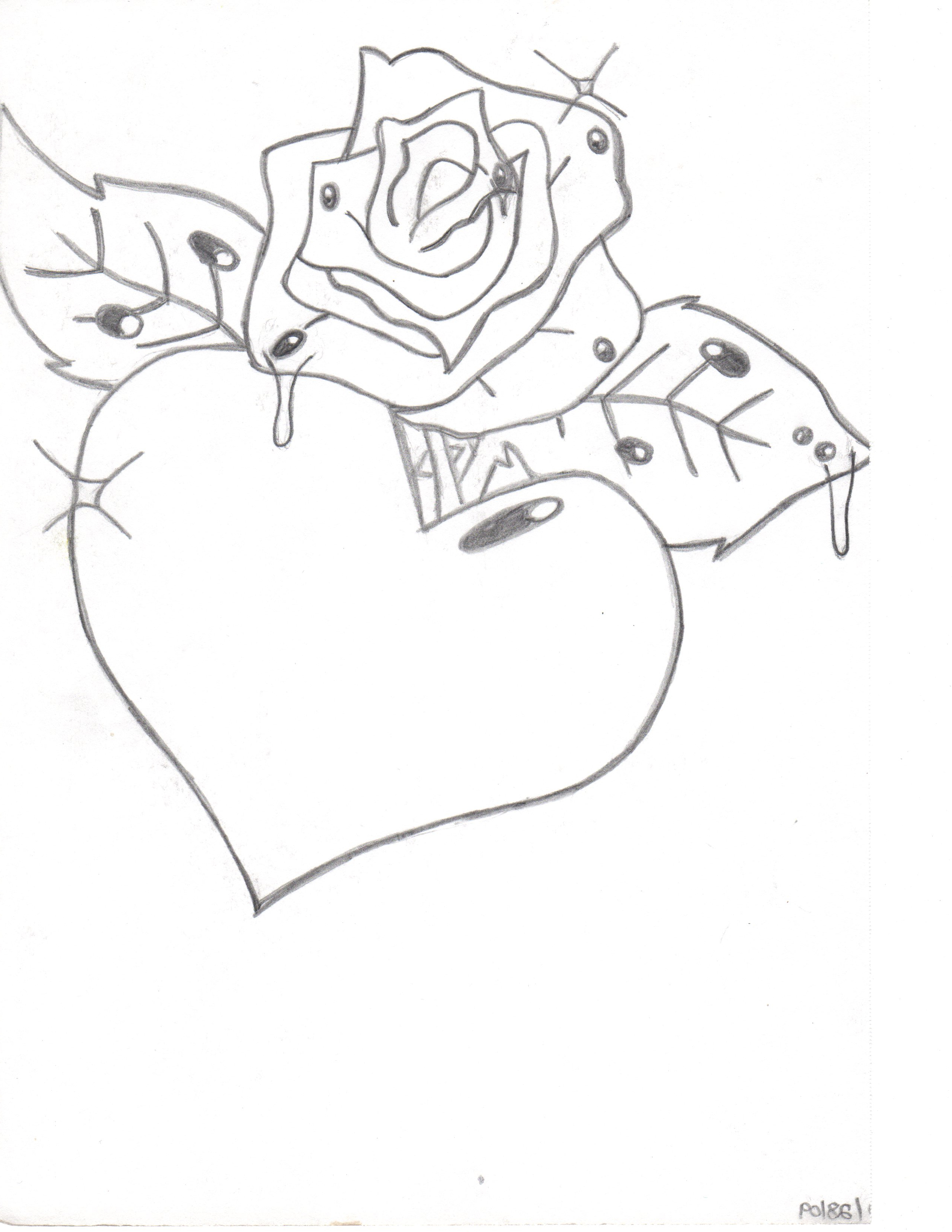 Rose Pictures Drawing