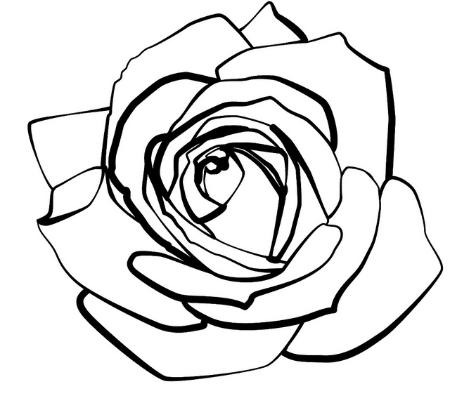 640x584 Line Drawing Clipart