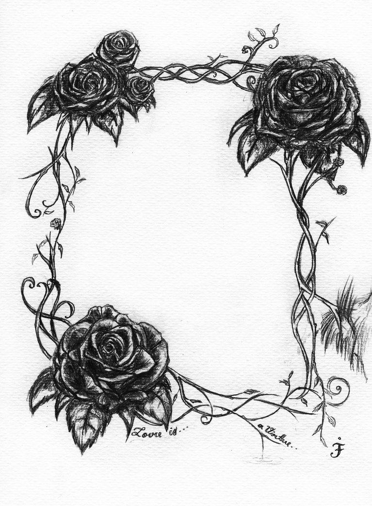 767x1042 Rose Vine Drawings
