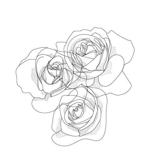 500x540 Drawn Line Rose