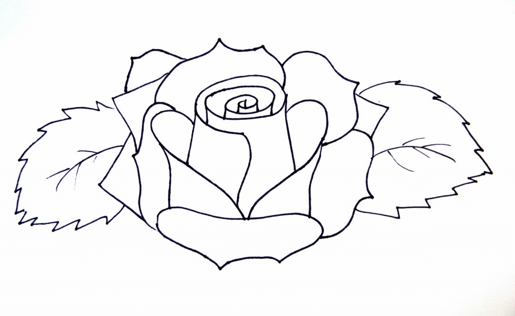 1024x628 Easy Rose Drawings How To Draw A Rose Flower Easy Line Drawing