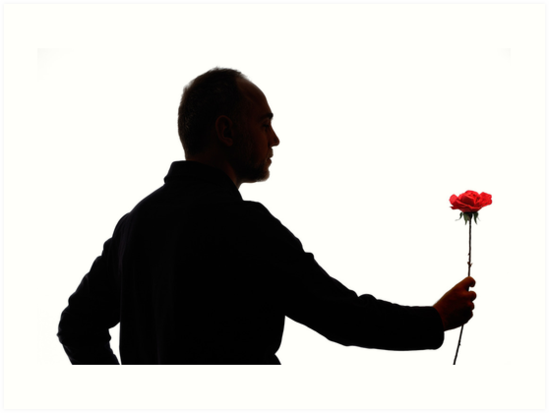 549x413 Silhouette of mature man holding rose Art Prints by Sami Sarkis