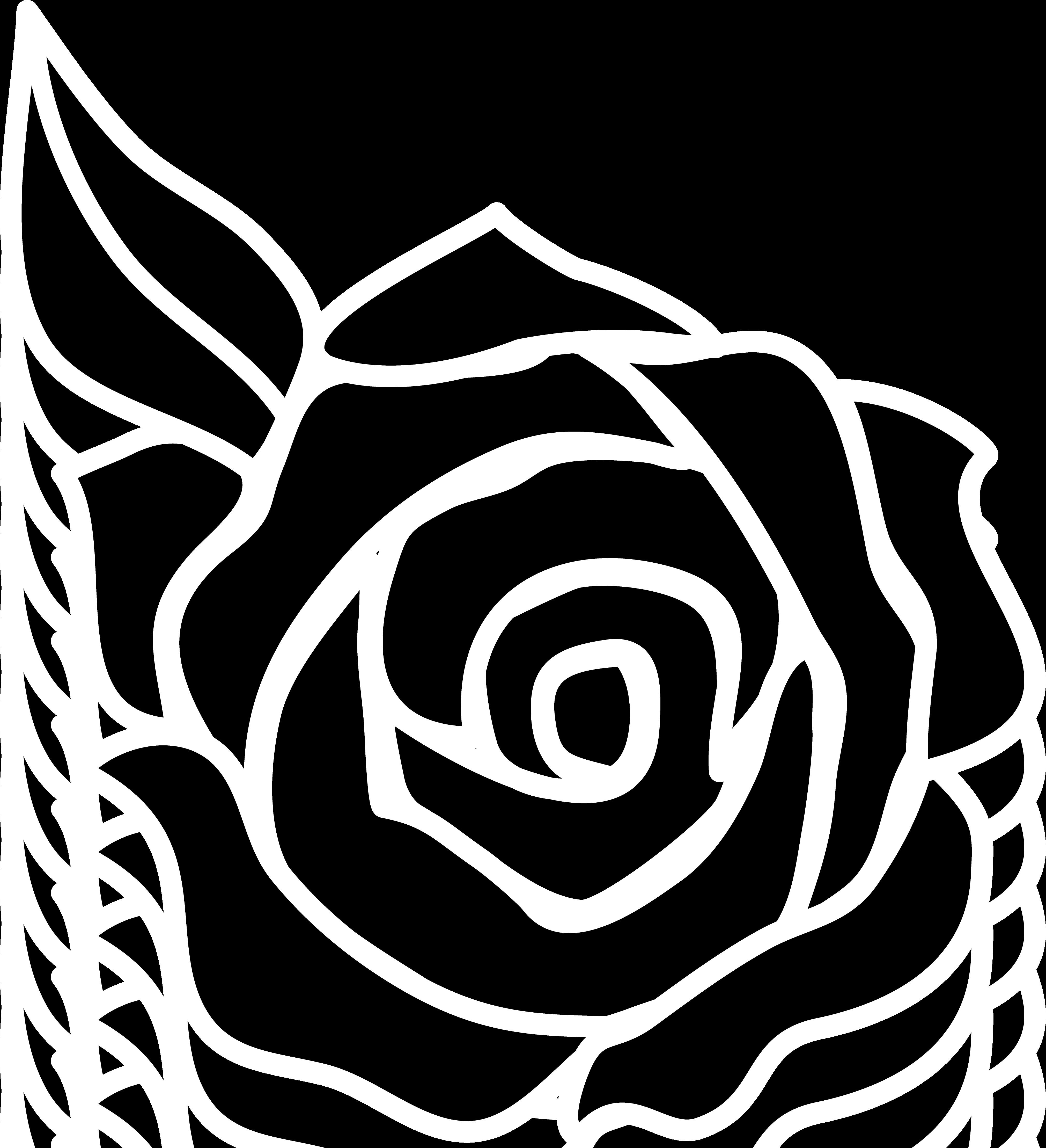 4042x4434 Black Rose Silhouette Design