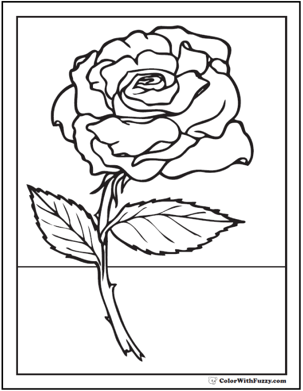 how to draw a realistic rose with stem