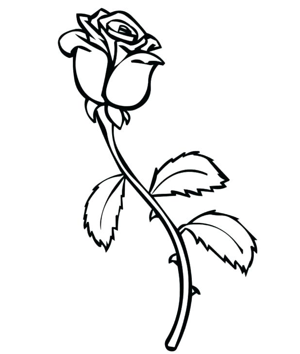 618x729 Free Coloring Pages Of Roses Free Colori Pages Roses Printable