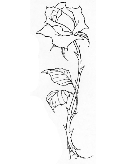rose stem drawing at getdrawingscom free for personal