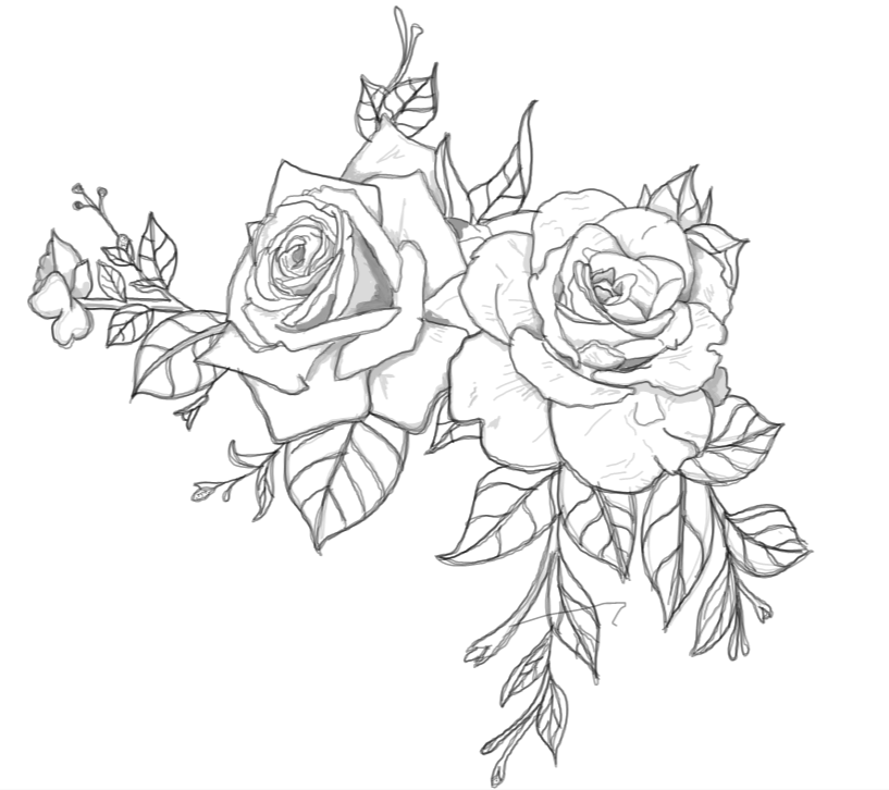 Line Drawing Rose Tattoo : Rose tattoo line drawing pixshark images