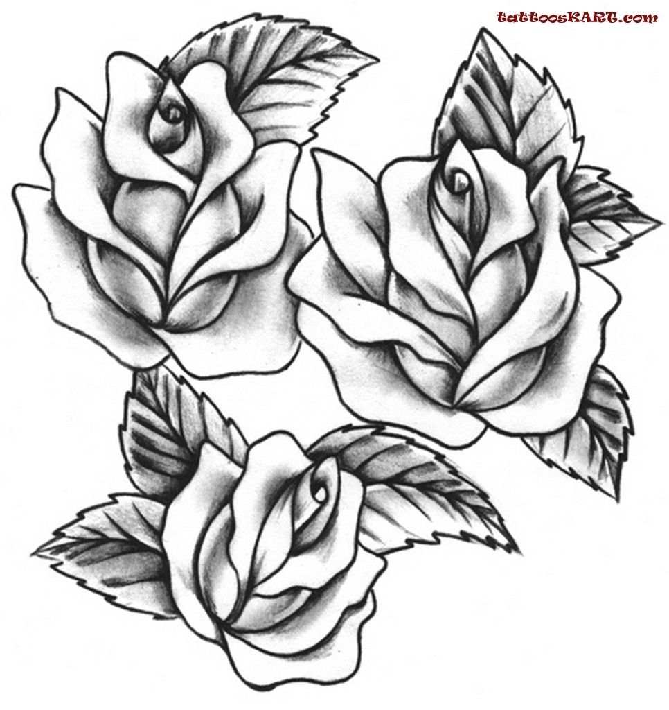 966x1024 Rose Tattoos Drawings Rose Tattoo Designs For Foot, Rose Tattoo