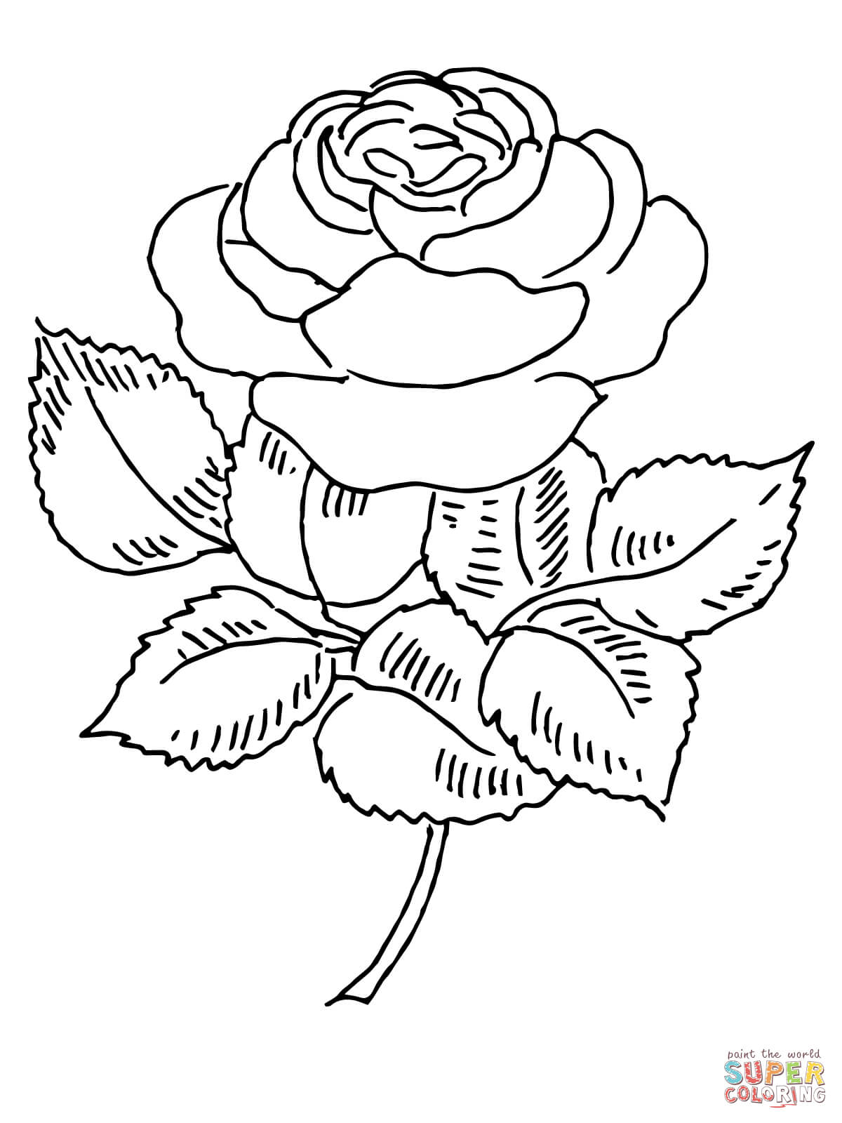1200x1600 Beautiful Rose With Thorns Coloring Page In Rose Coloring Pages