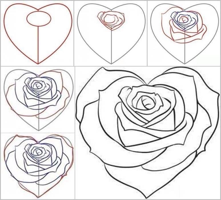 774x700 Hoe Schets Je Een Mooie Roos Drawings Amp How To Draw