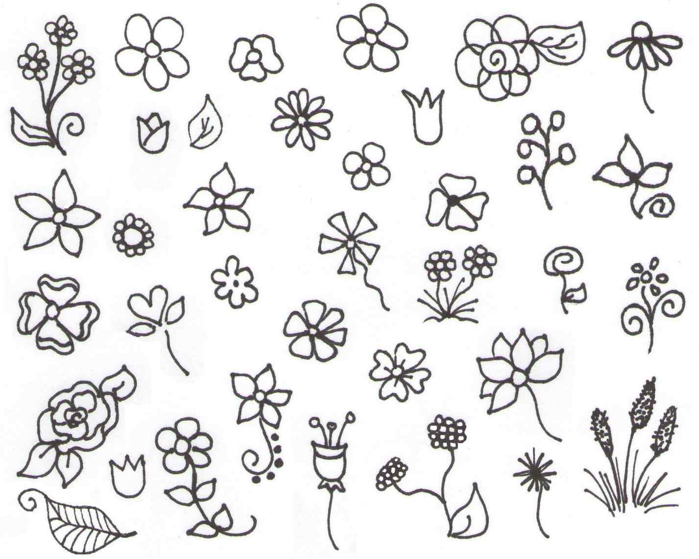 1427x1140 Roses Drawing Tutorial